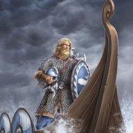 viikinki75